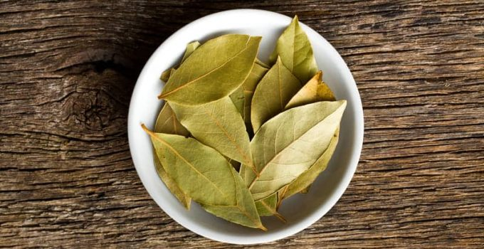 Substitute for bay leaf