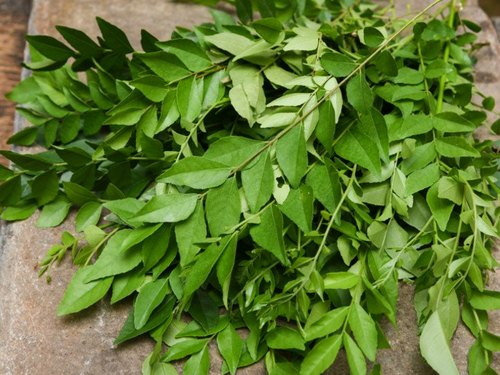 curry-leaves image